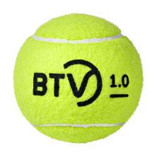 https://www.tennis-world.de/produkte/Dunlop-btv-1-0-4er-tennisballdose2.jpg