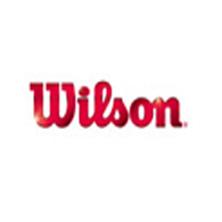 Wilson US Open 4er Tennisbälle